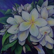 Frangipani in Bloom