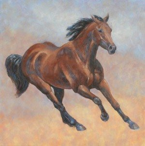 Quarter Horse  Action Study