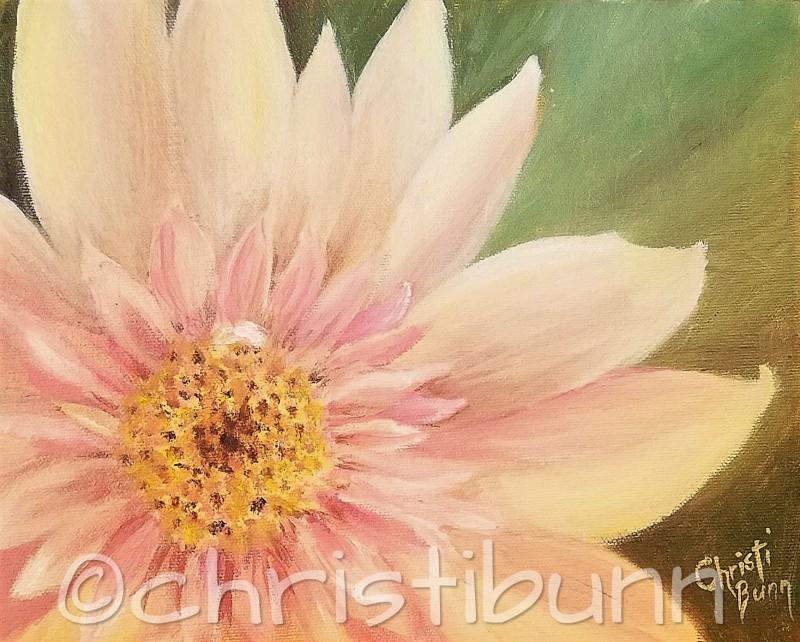 Oil Paintings by Christi Bunn