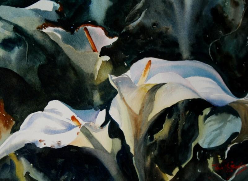 Arum Lillies 11 27cm x 38cm $500 F (1024x750).jpg