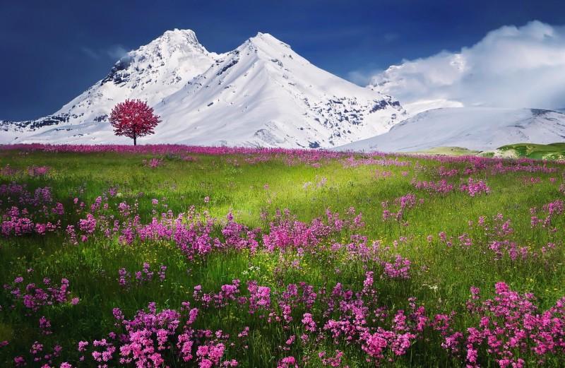 breathtaking-calm-color