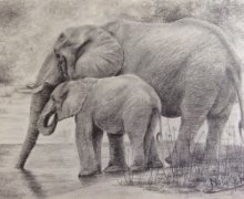 2019 Mother and Calf-Graphite.jpg