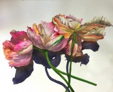 Learn New Watercolor Techniques with Evelyn Dunphy & French Escapade