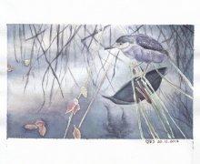 Ślepowron / Migrating Bird