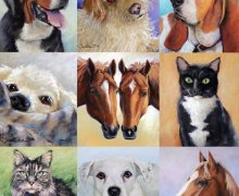 Horse Art Commissions & Pet Portraits