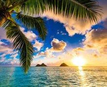 Ocean of Hawaii