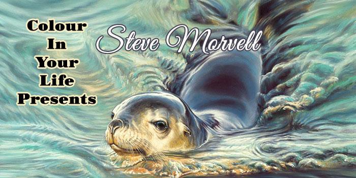 Steve Morvell on Colour In Your Life