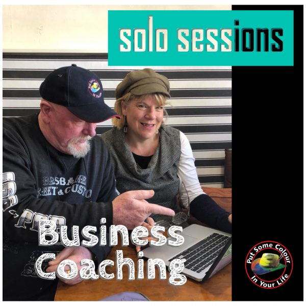 one on one business coaching solo sessions