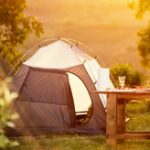 Profile picture of camptent
